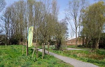 Hollebeek